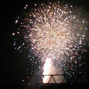 葛飾納涼花火大会|花火の思い出はフィサリスフラワー